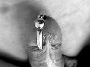 Mann piercing intim Genital piercing